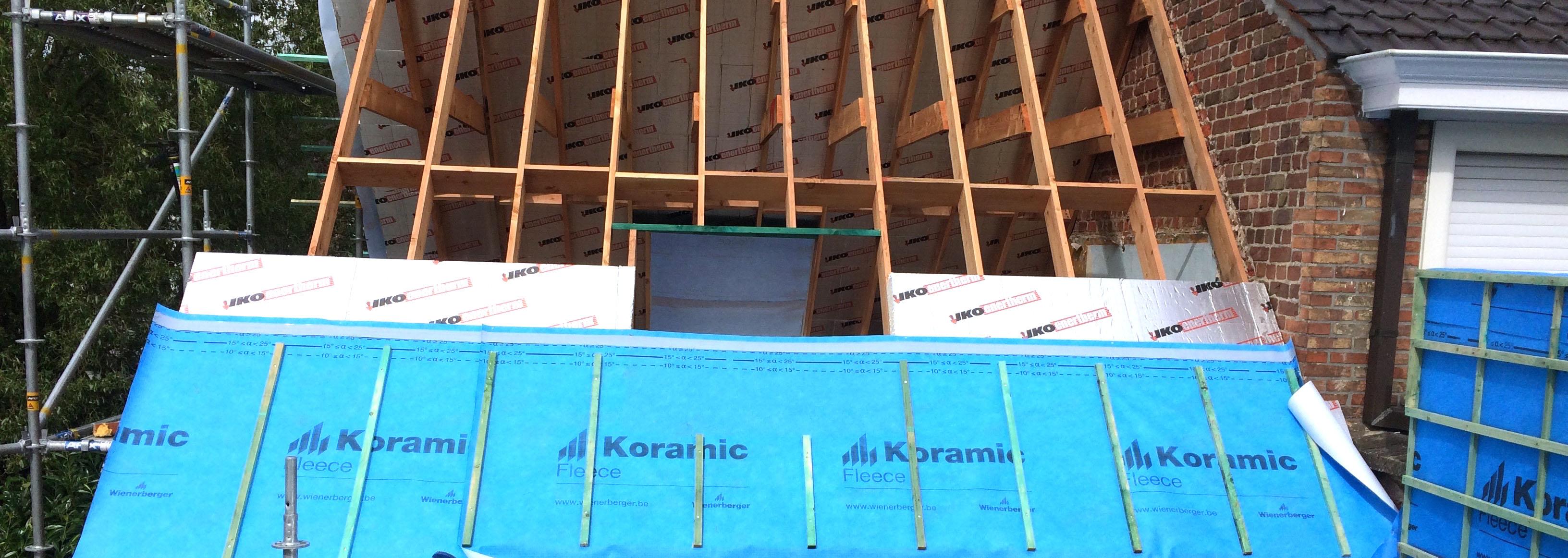 Dakwerken - Nico Desmet - sarkindaken - renovatie, bouwen, verbouwen