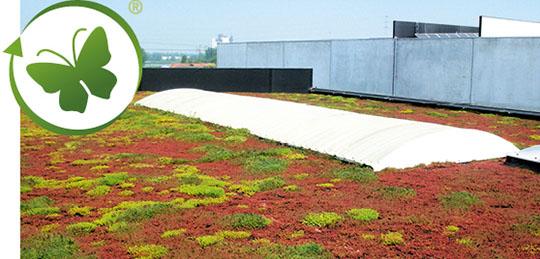EPDM: Milieuvriendelijk - uitstekend voor aanleg van een groendak!